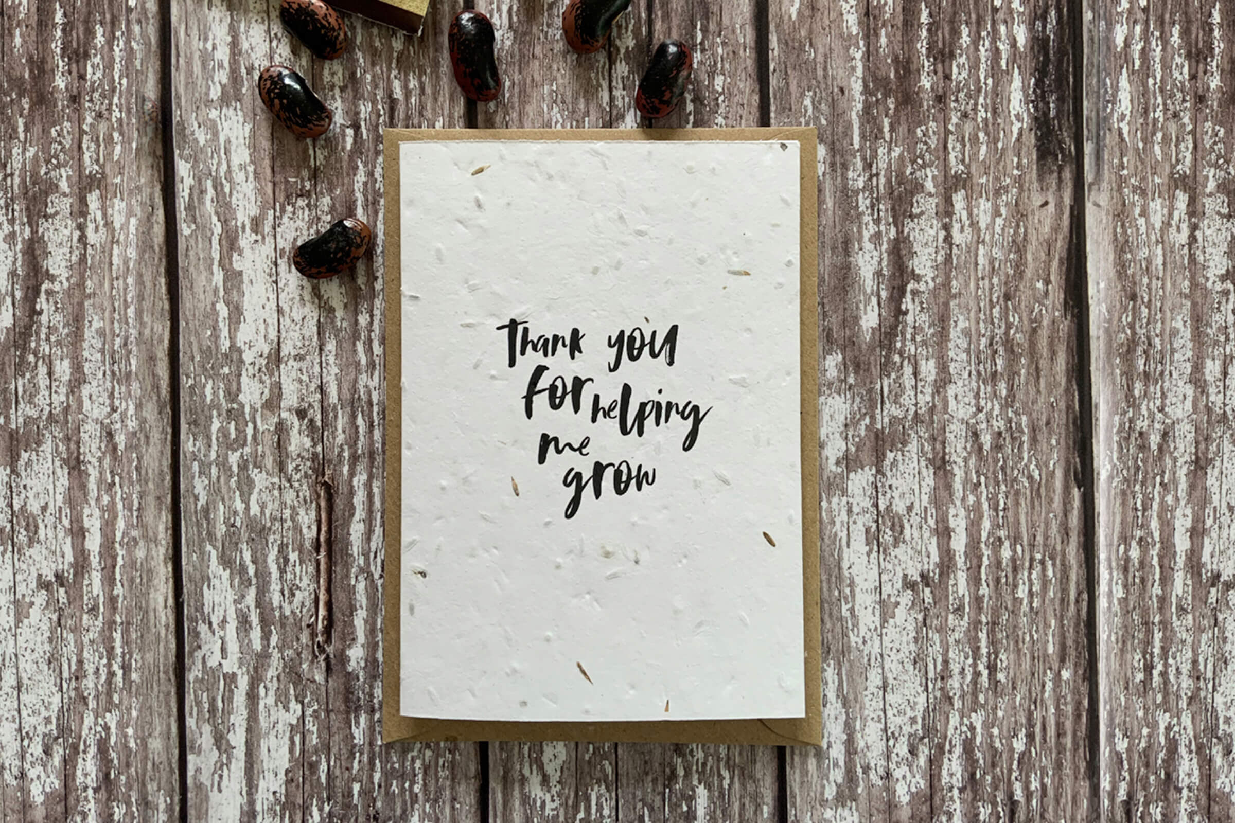 Andrey & Coco - Teacher Cards And Presents